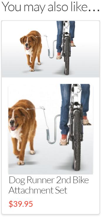 2nd Bike attachment