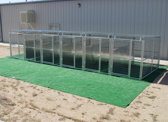 6 Run Outdoor Dog Kennel using 6 gauge welded wire