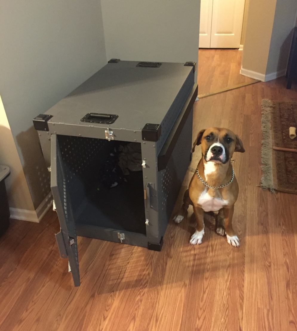 Banner_with_his_new_Heavy_duty_dog_crate_from_CarryMyDog.com
