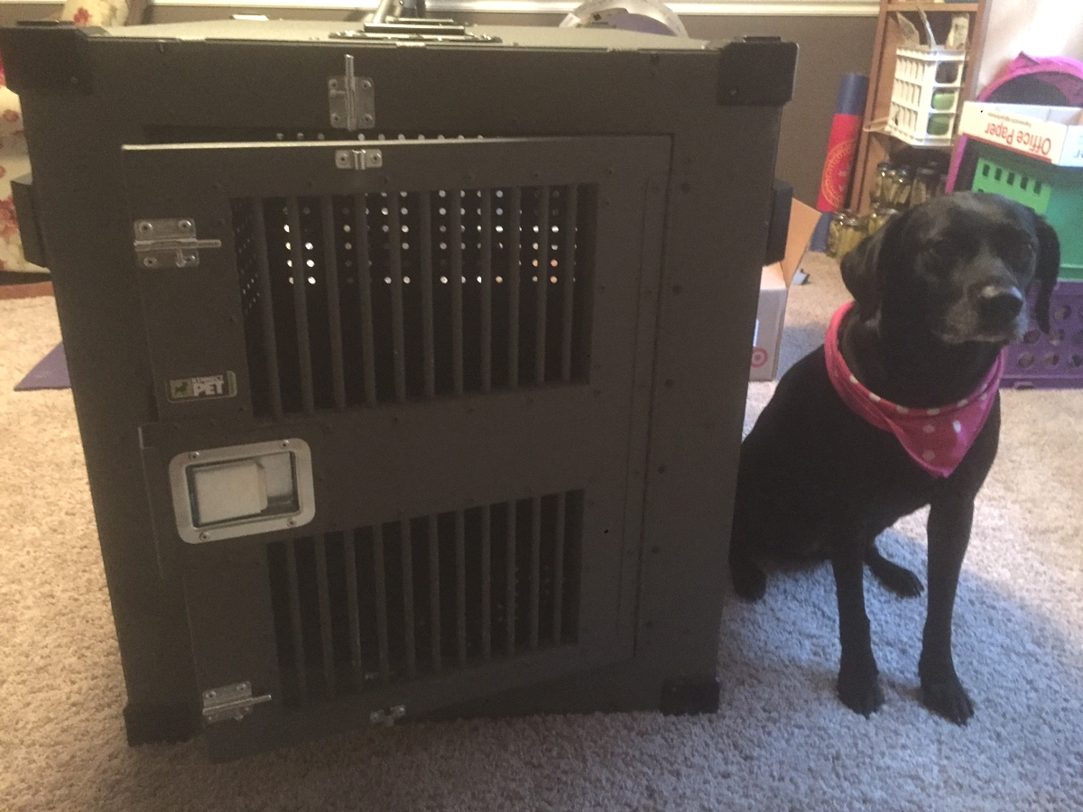Heavy_Duty_Dog_Crate_High_Anxiety_Molly