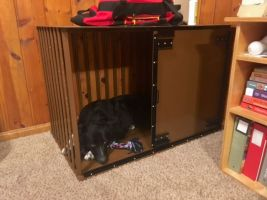 Heavy Duty Dog Crate CarryMyDog.com Chris Beck-2