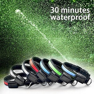 30 Minutes waterproof LED Lighted Solar Dog Colllar