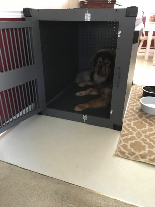 Jeff_Heavy_duty_dog_crate_testimonial