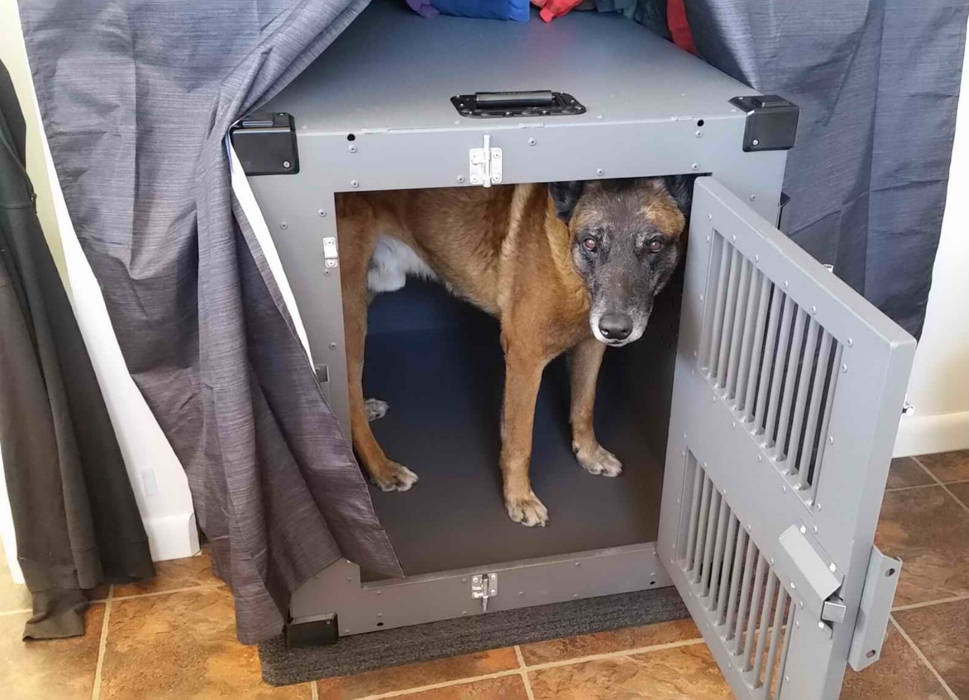 Lwee_in_his_High_Anxiety_heavy_duty_dog_crate
