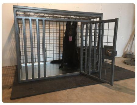 Giant Custom Crate Heavy duty dog CarryMyDog.com