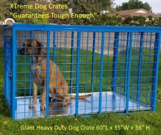 60 inch custom heavy duty dog crate by XTreme