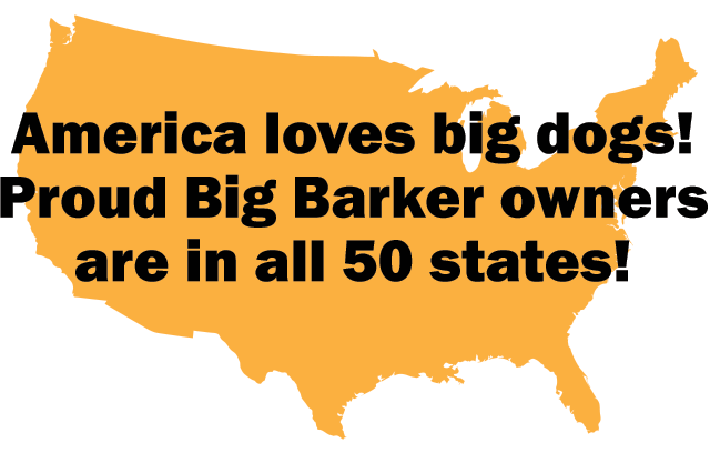 America loves Big Barker beds