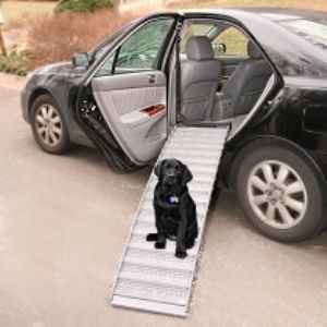 Ramp4Paws with Happy Dog in 4 Door Sedan Installation